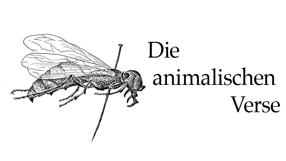 Die animalischen Verse von Anni Kaufhold