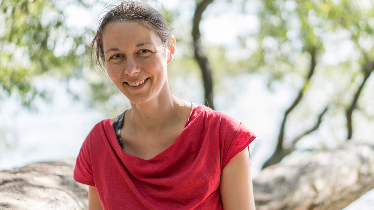 Heidi Lehmann - periplaneta